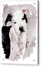 Black And White Pit Acrylic Print by Debra Jones