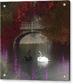 Black And White Swans Acrylic Print by Jan Keteleer