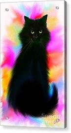 Black Cat Rainbow Sky Acrylic Print by Nick Gustafson