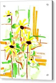 Black Eyed Susans Acrylic Print by Teddy Campagna