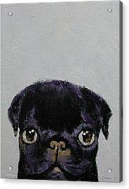 Black Pug Acrylic Print by Michael Creese