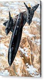 Blackbird Acrylic Print by Charles Taylor