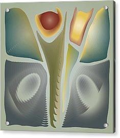 Blendflower Still Life Acrylic Print by Kevin McLaughlin