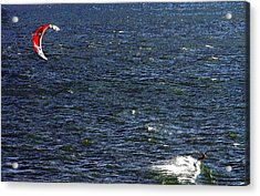 Blowing In The Wind Acrylic Print by David Lee Thompson