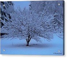 Blue Christmas Acrylic Print by Betty Northcutt
