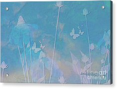 Blue Daisies And Butterflies Acrylic Print by Sherri Of Palm Springs