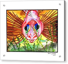 Blue-eyed Triple Fin Acrylic Print by Chris Crowley