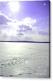 Blue Frozen Lake Acrylic Print by Silvie Kendall