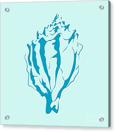 Blue Seashell Acrylic Print by Lauren Amelia Hughes