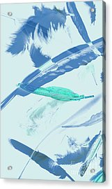 Blue Toned Artistic Feather Abstract Acrylic Print by Jorgo Photography - Wall Art Gallery