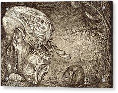 Bogomils Mousetrap Acrylic Print by Otto Rapp