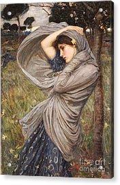 Boreas Acrylic Print by John William Waterhouse