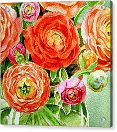 Ranunculus Bouquet Acrylic Print by Irina Sztukowski
