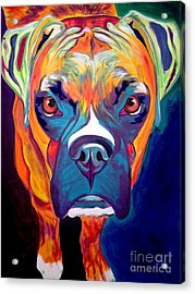 Boxer - Harley Acrylic Print by Alicia VanNoy Call