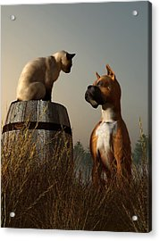 Boxer And Siamese Acrylic Print by Daniel Eskridge