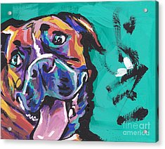 Boxer Luv Acrylic Print by Lea S