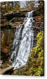 Brandywine Falls Acrylic Print by Tom Mc Nemar