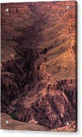 Bright Angel Canyon Grand Canyon National Park Acrylic Print by Steve Gadomski