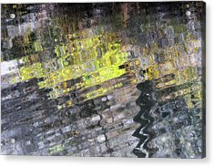 Brilliance In The Darkness Acrylic Print by Donna Blackhall