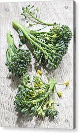Broccoli Florets Acrylic Print by Elena Elisseeva