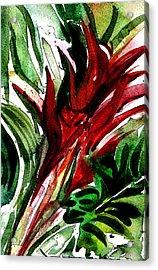 Bromelia Acrylic Print by Mindy Newman