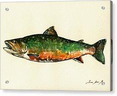 Brook Trout Acrylic Print by Juan  Bosco