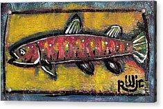 Brook Trout Acrylic Print by Robert Wolverton Jr