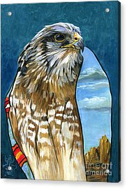 Brother Hawk Acrylic Print by J W Baker
