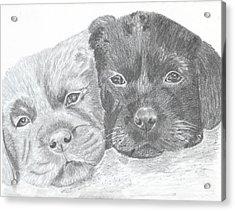 Brothers Acrylic Print by DebiJeen Pencils