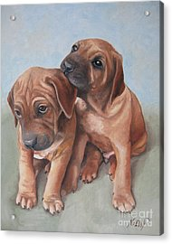 Brothers Acrylic Print by Jindra Noewi