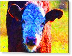 Brown Cow . Painterly Acrylic Print by Wingsdomain Art and Photography