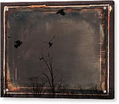 Brown Earth Acrylic Print by Gothicolors Donna Snyder