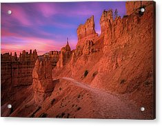 Bryce Trails Acrylic Print by Edgars Erglis