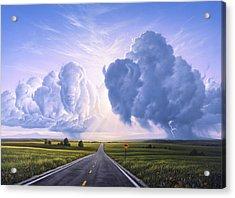 Buffalo Crossing Acrylic Print by Jerry LoFaro