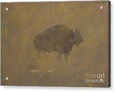 Buffalo In A Sandstorm Acrylic Print by Albert Bierstadt
