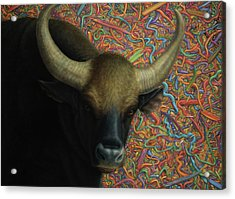 Bull In A Plastic Shop Acrylic Print by James W Johnson