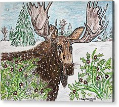 Bull Moose In The Wilderness Acrylic Print by Kathy Marrs Chandler