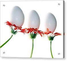 Bunny Bouquet Acrylic Print by Rebecca Cozart