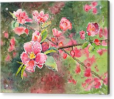 Burst Of Spring Acrylic Print by Corynne Hilbert