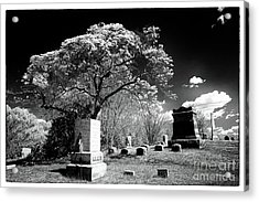 Bury Me Under A Tree Acrylic Print by John Rizzuto