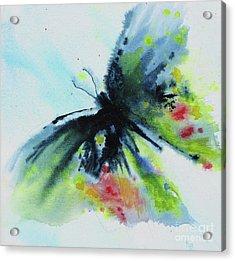Butterfly 1 Acrylic Print by Karen Fleschler
