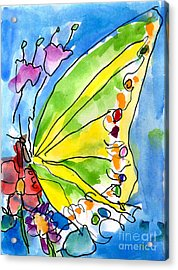 Butterfly Acrylic Print by Jeffrey Shutt Age Six