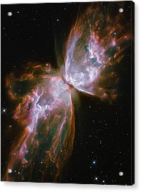 Butterfly Nebula Acrylic Print by The  Vault - Jennifer Rondinelli Reilly