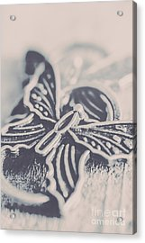 Butterfly Shaped Charm Acrylic Print by Jorgo Photography - Wall Art Gallery