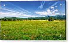 Cades Cove Meadow Acrylic Print by Frank J Benz