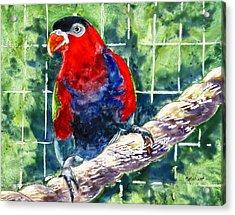 Caged Acrylic Print by Marsha Elliott