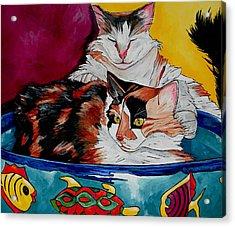 Calico And Et Acrylic Print by Patti Schermerhorn
