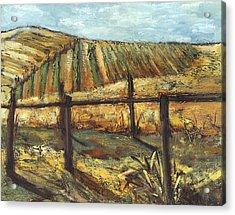 California Vineyard Acrylic Print by Susan Adame