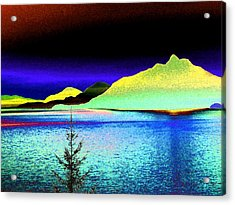 Call Of The Coast Acrylic Print by Will Borden