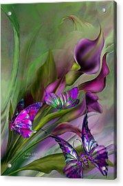 Calla Lilies Acrylic Print by Carol Cavalaris